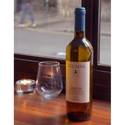 Bedales of Borough Wine Selection Buy Online
